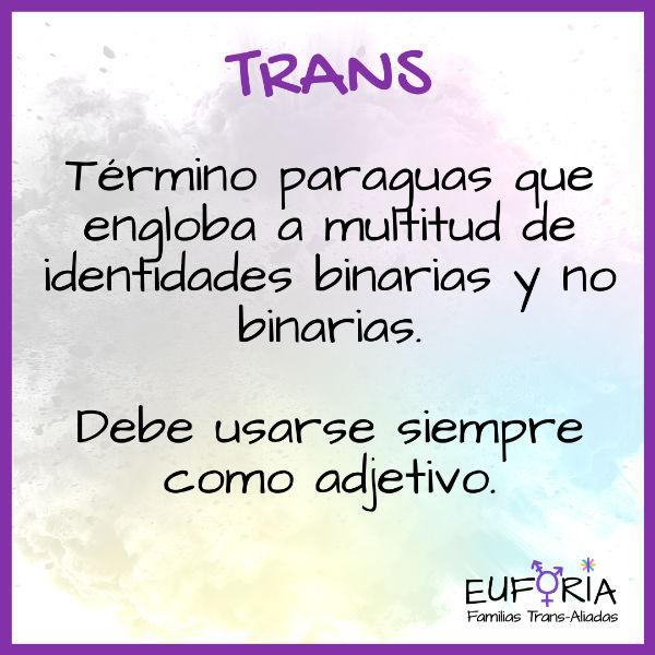12 Trans