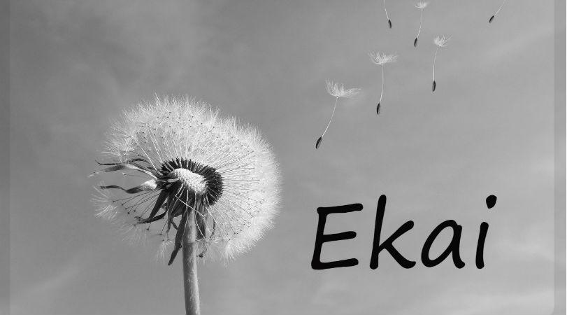Ekai nos ha dejado con solo 16 años
