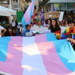 """Los institutos de Redondela instalaron un """"banco trans"""" para celebrar el 20N"""