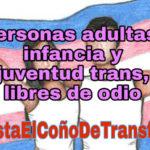 Petición de expulsión del Partido Feminista de IU por discursos de odio contra las personas adultas, infancia y juventud trans