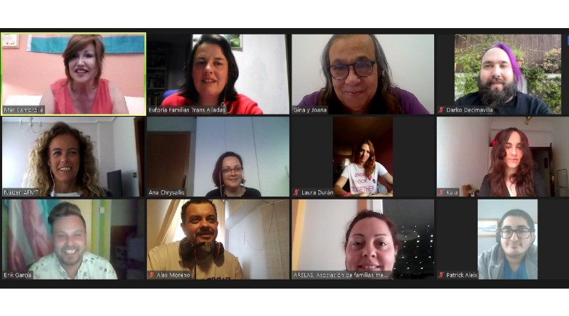 Colectivos Trans de España y sus familias piden comparecencia en el congreso de Carmen Calvo y urgen al Gobierno la tramitación de la Ley Trans Estatal