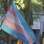 Una ley para vivir: la experiencia de la ley trans andaluza