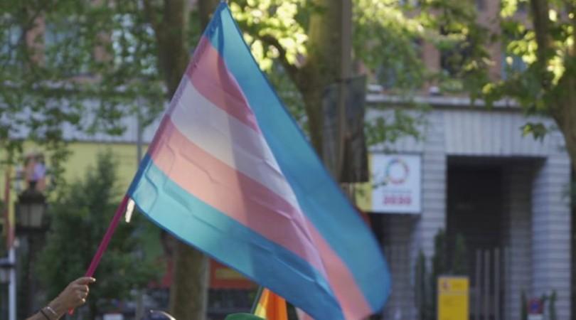 Bandera trans / María Artigas