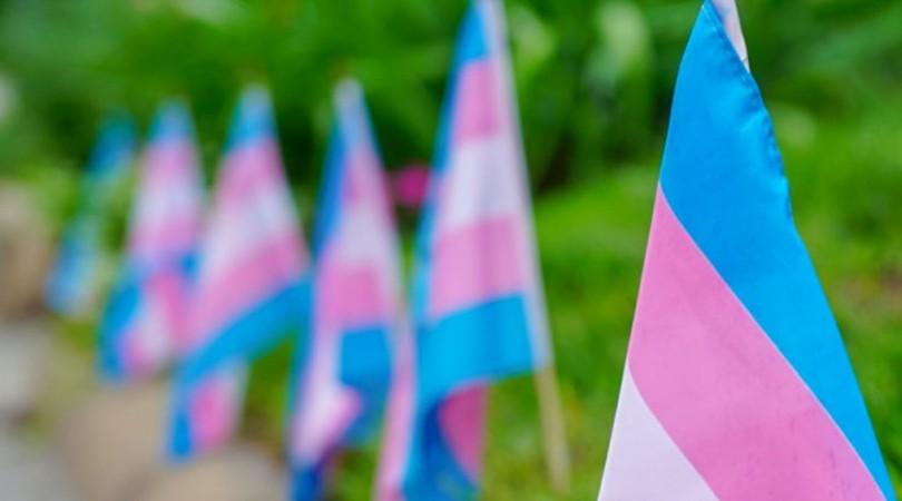 La Ley Trans y el futuro del género