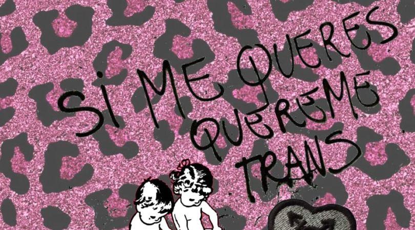 El ¿corto? invierno del transfeminismo: una reseña atrapada en una genealogía